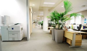 commercial flooring - carpet